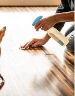 Animal Disinfectant Market by Type and Geography - Forecast and Analysis 2021-2025